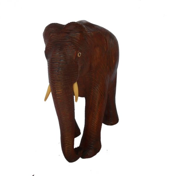 skin-elephant-1