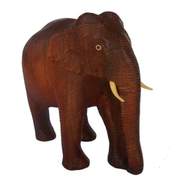 skin-elephant-2