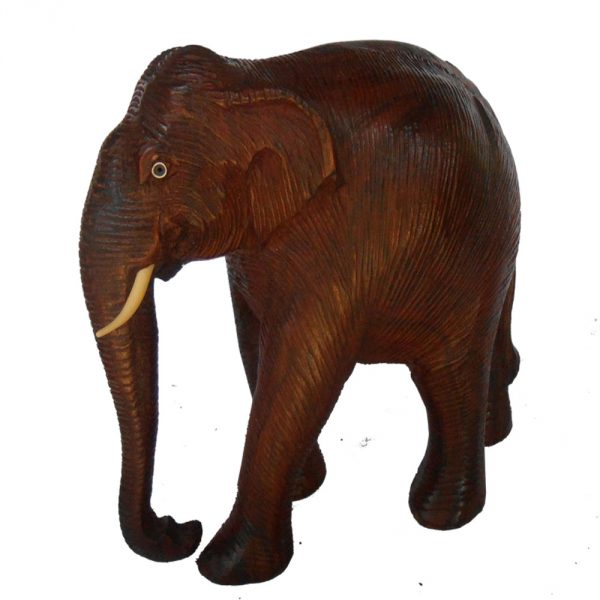 skin-elephant
