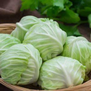 Cabbage/നാടൻ 1kg